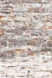 Wallstructure 免版税库存照片