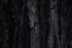 Wallwaper расшивы Стоковое фото RF