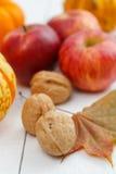 Walnüsse mit roten Äpfeln und Ahornblatt Lizenzfreies Stockfoto