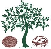 Walnuss-Baum Lizenzfreies Stockbild