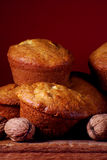 Walnuss-Muffins Stockfotografie