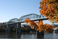 Walnuss-Straßen-Brücke Stockbilder