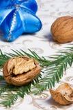 Walnuss-, Weihnachtsverzierungen und Tanne Lizenzfreie Stockfotos