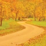 Walnussbäume und Fußweg im Herbst, buntes Gelb, Rotblätter, große ausführliche Szene im Freien, alte Bahn im Holz, gealterter Asp Stockbilder