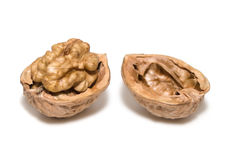 Walnut Stock Image