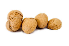Walnut. On white background, nuts royalty free stock photo