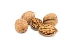Walnut. Broken walnut isolated on white Royalty Free Stock Images