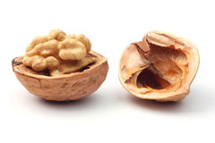 Walnut. Ripe walnut against white background Stock Image