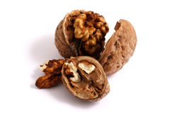 Walnut. Fresh walnuts on white background Royalty Free Stock Image