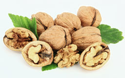 Walnut. On white background mellow Stock Images