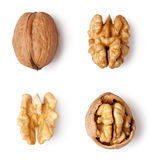 Walnut Stock Photos