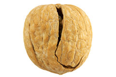 Walnut. Cracked walnut. Isolated over white Stock Images