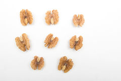 Walnut. Stock Photo
