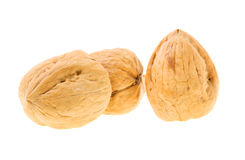 Walnut. Three walnuts isolated on a white background Royalty Free Stock Image