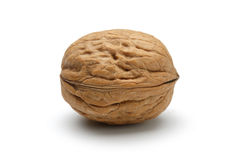 Free Walnut Royalty Free Stock Images - 22532509