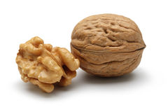 Free Walnut Royalty Free Stock Image - 22532986