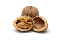 Free Walnut Royalty Free Stock Image - 22533036