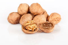 Walnut. On white background Stock Images