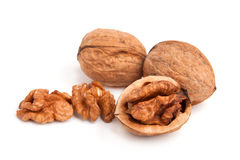 Free Walnut Stock Image - 26685691