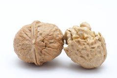 Walnut. Two walnut on white background Royalty Free Stock Photography