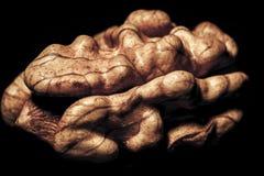 Walnut. A closeup of a walnut stock images