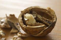 Walnut. Cracked walnut on the kitchen table, macro Royalty Free Stock Photography