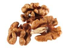 Walnut Royalty Free Stock Photo
