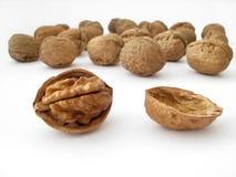 Walnut. Isolated on a white background Royalty Free Stock Photo