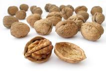 Walnut. Isolated on a white background Stock Photo