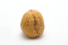 Walnut. A walnut presented on white background Royalty Free Stock Photos
