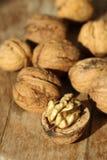 walnut Стоковое Изображение RF