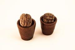 walnut Στοκ Φωτογραφίες