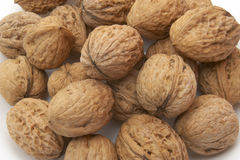 Walnut 5 Stock Image