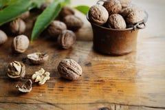 walnut Стоковые Изображения