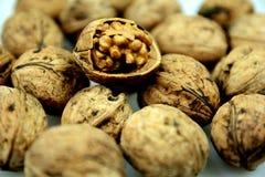walnut Стоковые Изображения RF
