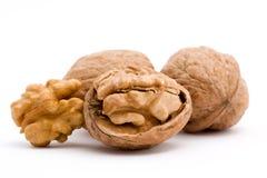 Walnut. Dry walnut fruit studio isolated closeup Royalty Free Stock Image