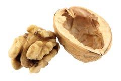 Walnut. Isolated on a white background stock image