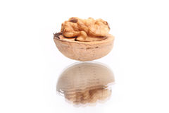 Walnut Stock Photo