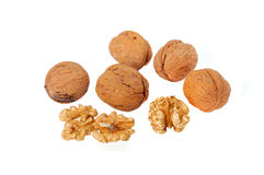 Walnut. Very conducive to the health of Walnut Royalty Free Stock Image