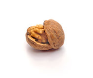Walnut. The split walnut which is represented on a white background Stock Photo