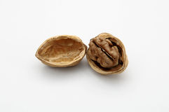 Walnut. Open walnut isolated on a white background royalty free stock photo