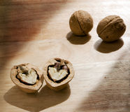 Walnut. Parts of the walnut as symbol of the love Royalty Free Stock Images