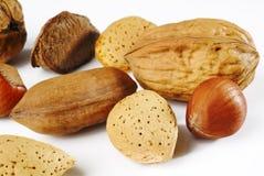Walnut almond and hazelnut Stock Image