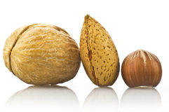 Walnut almond and nut Royalty Free Stock Images