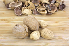 Walnut and almond nuts with shells Royalty Free Stock Photography