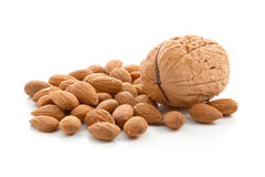 Walnut and almonds Stock Images