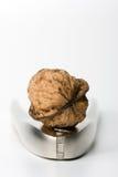 Walnut And Nutcracker Royalty Free Stock Photography