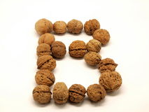 Walnut B. A letter B made of a string walnut Royalty Free Stock Photography