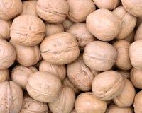 walnut background Stock Image