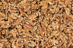 Walnut background. Background of peeled natural walnut stock image